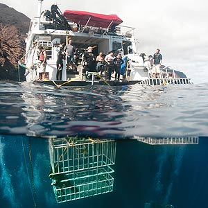 The Nautilus Explorer and shark cages off the coast of Guadalupe Island